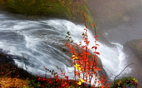 Обои осень, листья, река, Водопад