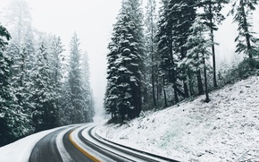 Обои зима, дорога, снег, лес, природа