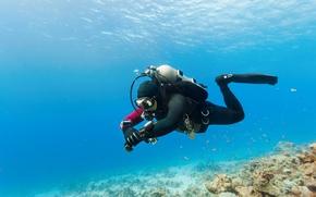 Картинка море, фото, спорт, подводный мир