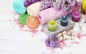 Обои цветы, лепестки, свечи, lilac, spa
