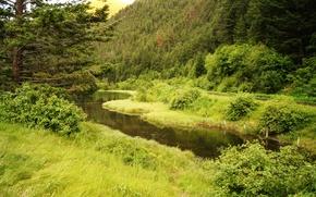 Обои канада, озеро, pear lake, лес, горы, зелень