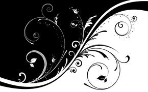 Обои черно-белая, узор, завитки