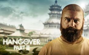 Обои The Hangover Part 2, Zach Galifianakis, Зак Галифианакис, Мальчишник 2: Из Вегаса в Бангкок, Alan, ...