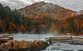 Картинка осень, лес, небо, горы, тучи, река, камни