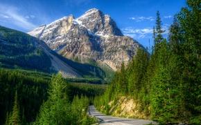 Картинка дорога, зелень, лес, небо, солнце, деревья, горы, скалы, голубое, обработка, Канада, Yoho National Park