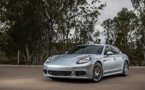 Картинка Porsche, Panamera, порше, US-spec, 2014, 970