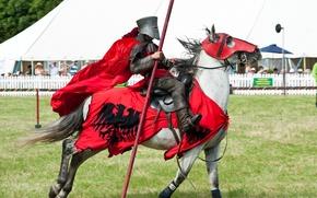 Картинка металл, конь, лошадь, доспехи, воин, рыцарь