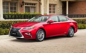 Обои Lexus, лексус, красный, седан