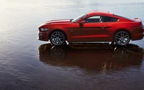 Картинка Ford, Вода, Отражение, Ракурс, Mustang GT, 2015