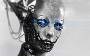 Картинка провода, робот, голова, арт, формулы, андроид