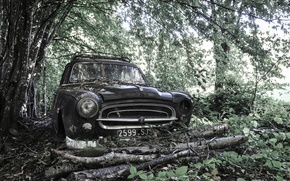 Обои машина, лес, Peugeot 403