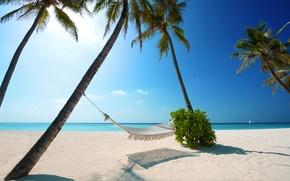 Обои утро, пальмы, берег, песок, дерево, море, пляжи, вода, пальма, лучи солнца, океан, солнце, отдых, свет, ...