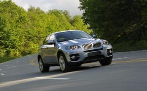 Картинка дорога, деревья, BMW, джип, БМВ, передок, Икс6