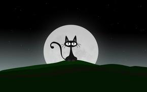 Обои луна, вектор, Кошак