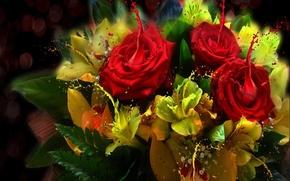 Картинка цветы, рисунок, растения
