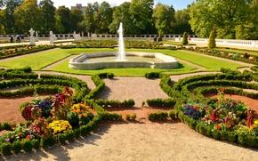 Обои цветы, сад, газон, Branicki Palace, кусты, Bialystok, деревья, Польша, фонтан, дизайн