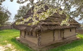 Обои трава, деревья, дом, забор, сад, Украина, изба, цветущие