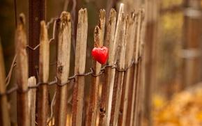 Обои свет, сердце, забор