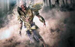 Обои смерть, труп, lord of zombies, воин, наплечники, лорд, зомби