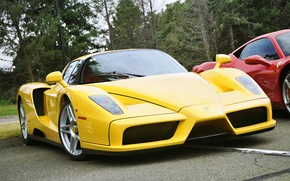 Картинка цвет, жёлтый, Ferrari, Enzo