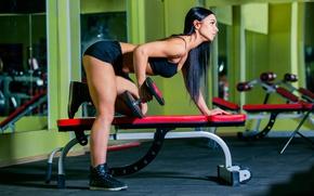Картинка workout, dumbbells, sportswear, triceps