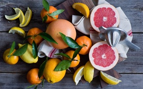Картинка цитрусы, лимоны, мандарины, грейпфруты