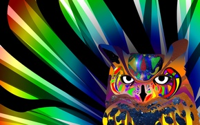 Картинка глаза, линии, сова, птица, краски, цвет