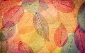 Обои осенние, abstract, фон, leaves, autumn, листья, colorful, transparent