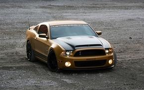 Картинка Shelby, Ford Mustang, cars, auto, GT640, Золотой Змеи