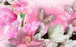 Обои бабочка, коллаж, лепестки, орхидеи, цветы