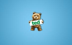 Обои медведь, фильм, TED, надпись