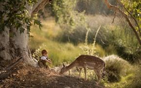Картинка природа, мальчик, олень