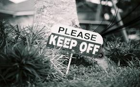 Обои трава, стиль, надпись, знак, табличка, ближний план, злость, предупреждение