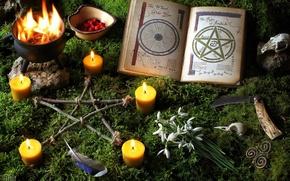 Обои перья, свечи, оккультизм, мох, книга, подснежники, нож, череп, пентаграмма, огонь
