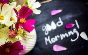 Картинка love, nature, flowers, petals, bouquet