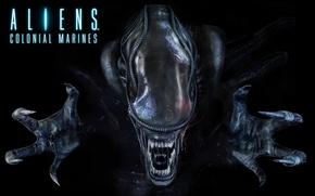 Картинка монстр, зубы, Чужой, когти, Alien, слизь, икла, Инопланетян, Xenomorph, Aliens Colonial Marines, Ксеноморф, Чужие: Колониальные …