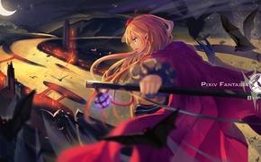 Картинка небо, девушка, ночь, оружие, месяц, аниме, арт, летучие мыши, pixiv fantasia, tsubasa19900920