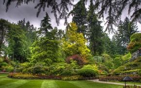 Картинка трава, деревья, цветы, парк, газон, ландшафт, канада, клумба, butchart victoria