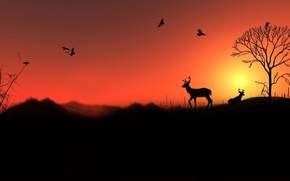 Картинка небо, солнце, пейзаж, закат, птицы, дерево, холмы, олень, силуэт
