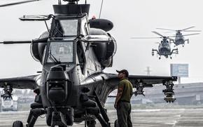 Картинка Вертолёт, Ударный, КНР, CAIC WZ-10, С участием, ОКБ «Камов», Производства