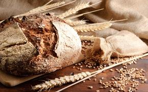 Картинка пшеница, зерно, колоски, хлеб, ржаной