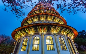 Картинка небо, дерево, вечер, освещение, Тайвань, храм, синее, цветение, Тайбэй