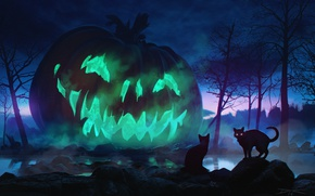 Обои коты, ночь, праздник, тыква, Halloween