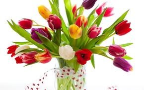Картинка букет, лента, тюльпаны, ваза