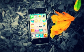 Картинка iPod, the, leaves, touch, between