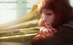 Картинка взгляд, девушка, лицо, аниме, арт, профиль, hibike! euphonium, oop, oumae kumiko
