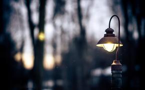 Картинка зима, свет, деревья, природа, вечер, падение, фонарь, снежок, сумерки.