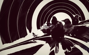 Картинка raven, stripes, circles
