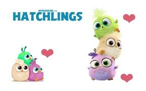 Картинка минимализм, арт, Hatchlings Angry Birds