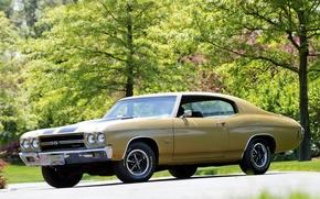Картинка Chevrolet, шевроле, мускул кар, muscle car, 1970, передок, 454, Chevelle, Hardtop Coupe